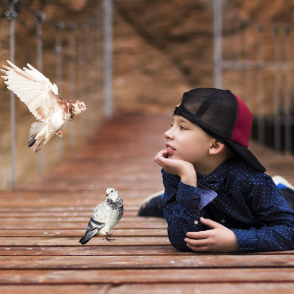 Boy and pigeons