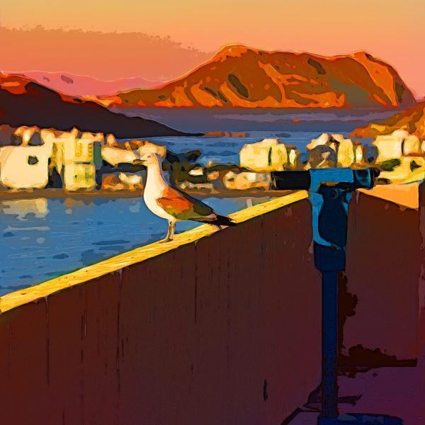 Binoculars and bird