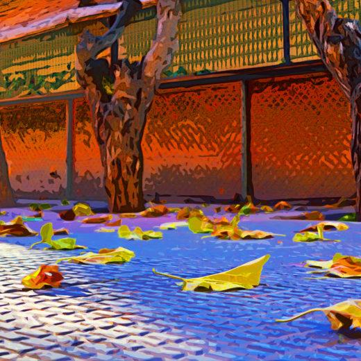Autumn on the sidewalk
