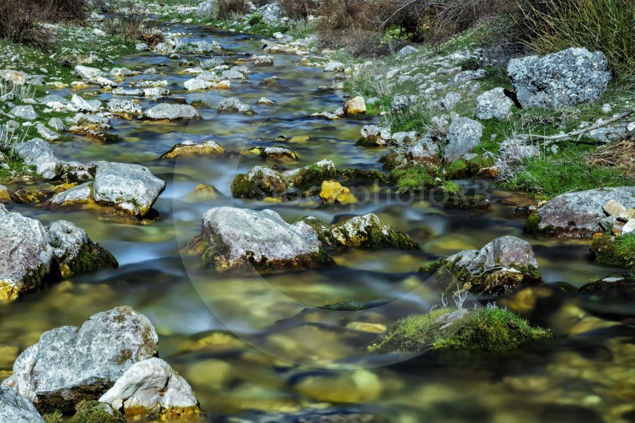 The source of the Segura river
